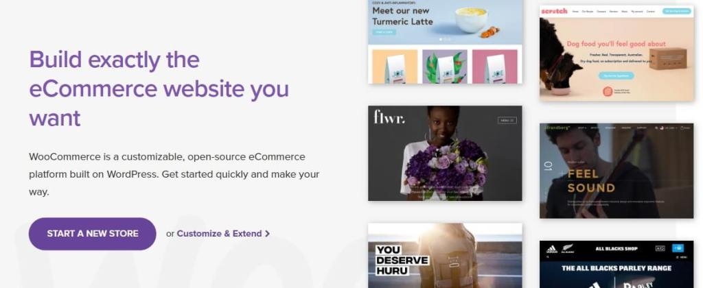 woocommerce is a plugin for wordpress ecommerce solution