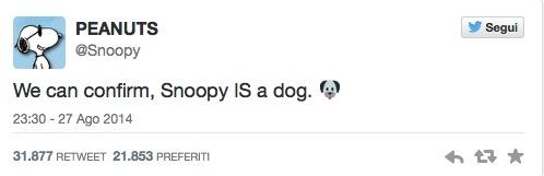 Tante le ironie sul web :D su Snoopy possiamo stare tranquille :D
