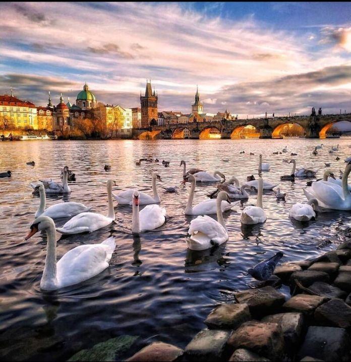 viaggi epifania 2020: visitare Praga