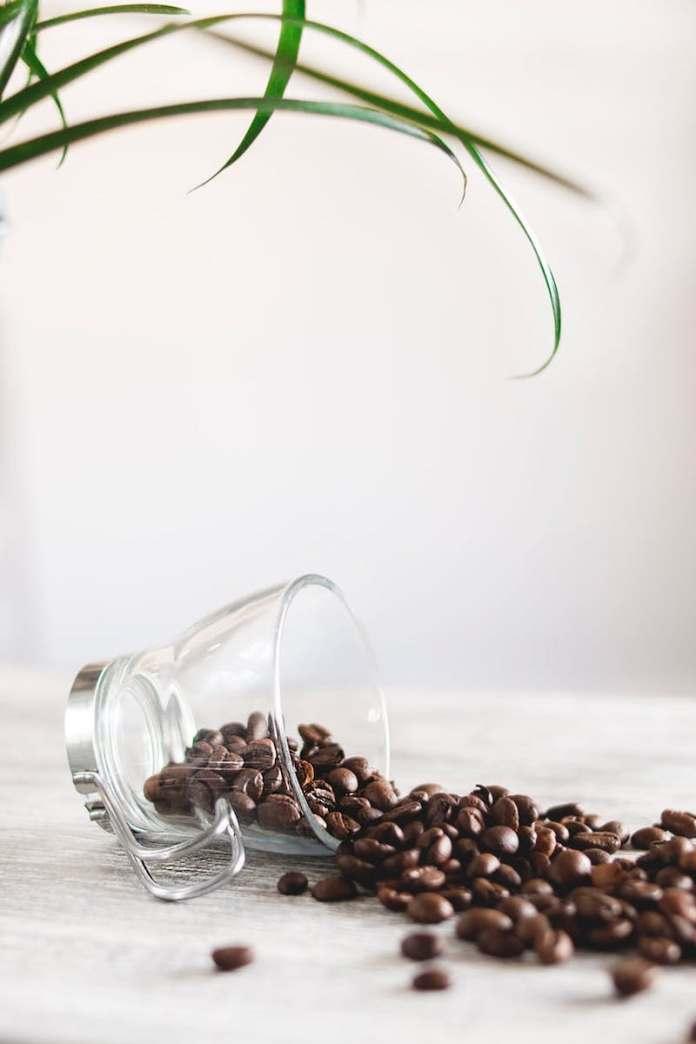 ClioMakeUp-usi-alternativi-caffè-13-chicchi-caffè.jpg