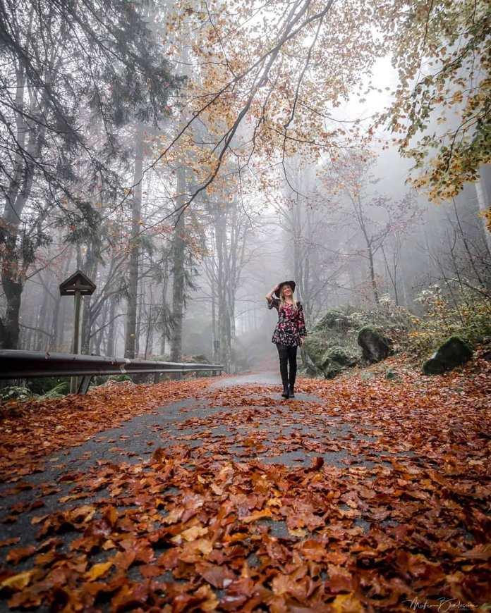 cliomakeup-viaggi-italia-autunno-11-foresta-bagnimasino
