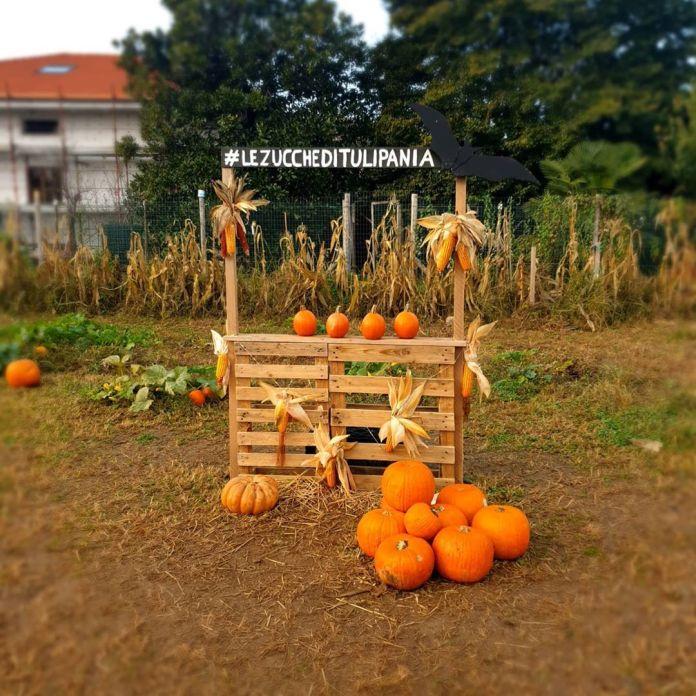 cliomakeup-viaggi-halloween-bambini-2020-3-tulipania