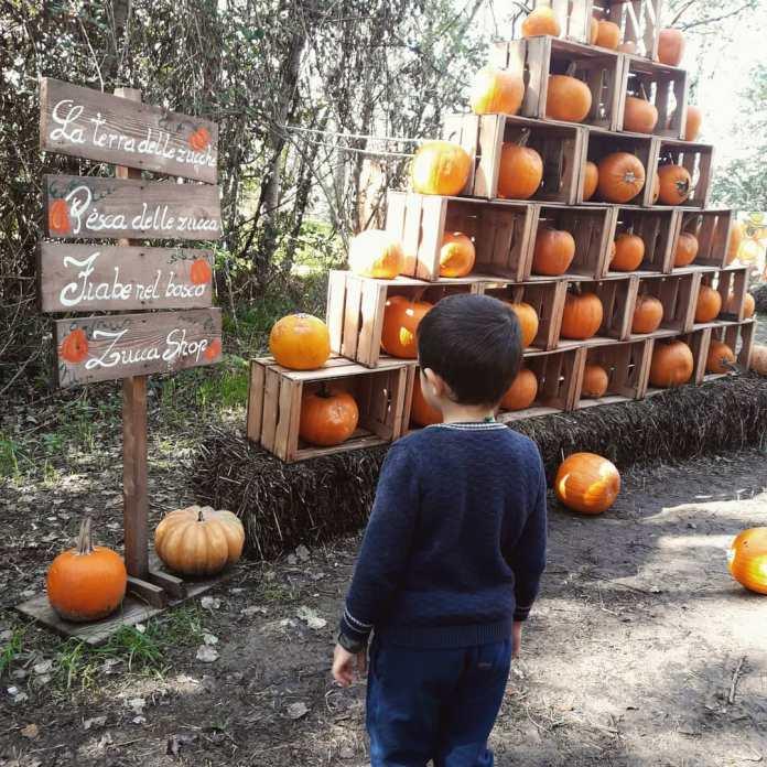 cliomakeup-viaggi-halloween-bambini-2020-8-terrazucche