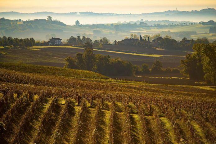 cliomakeup-viaggio-langhe-9-Monferrato