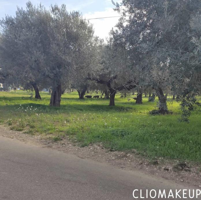 cliomakeup-buoni-propositi-2021-teamclio-francesca-natura