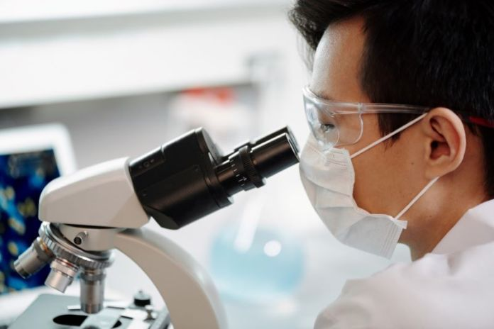 Cliomakeup-microbiota-intestinale-4-ricerca