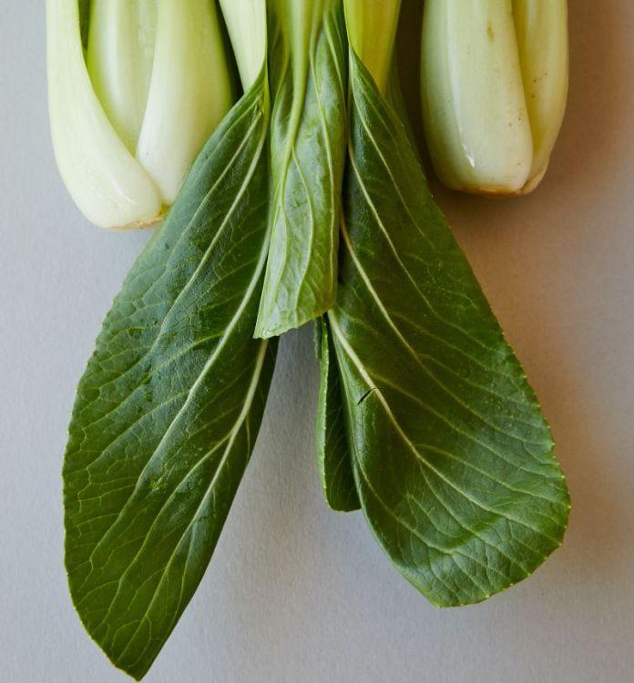 Cliomakeup-prodotti-biologici-6-agricoltura