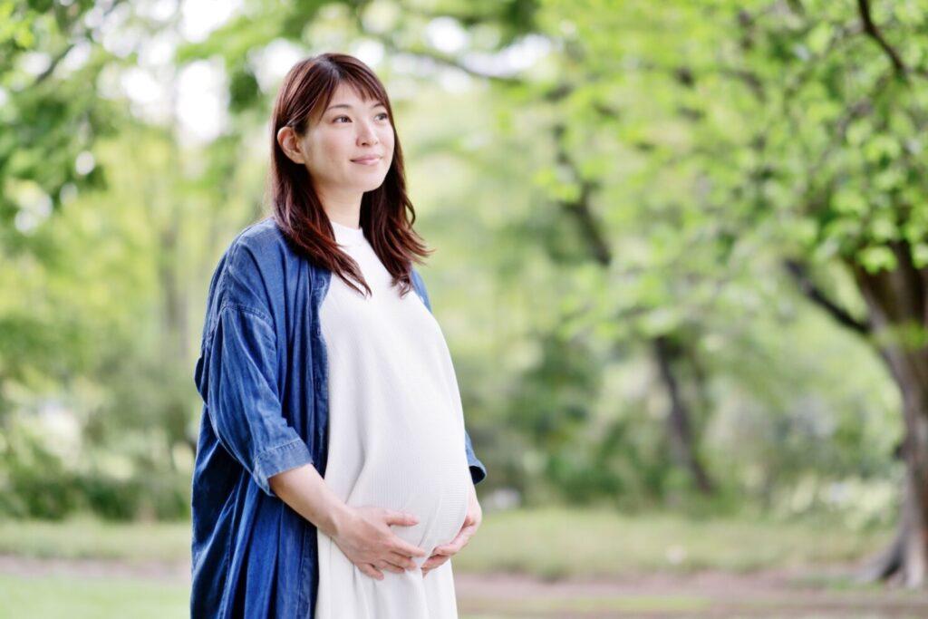 【醫師監修】妊娠中の安定期はいつからいつまで? 安定期に ...