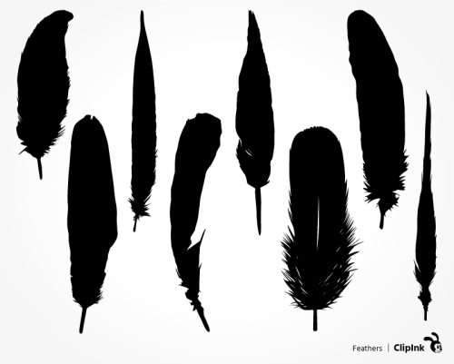feather svg
