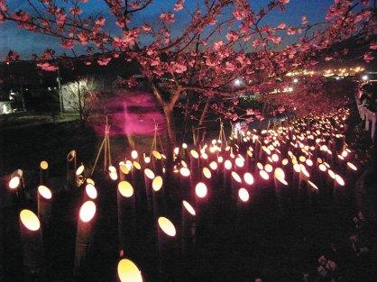 保田川沿いに2000本の竹灯篭が並ぶ