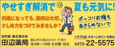 CL376_田邉薬局