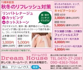 cl406_dreamhouse