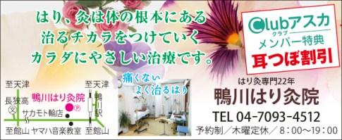 410_kamogawahari