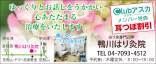420_kamogawa_harikyuin
