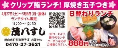 462mohachi_sushi