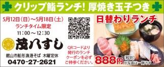 463mohachi_sushi