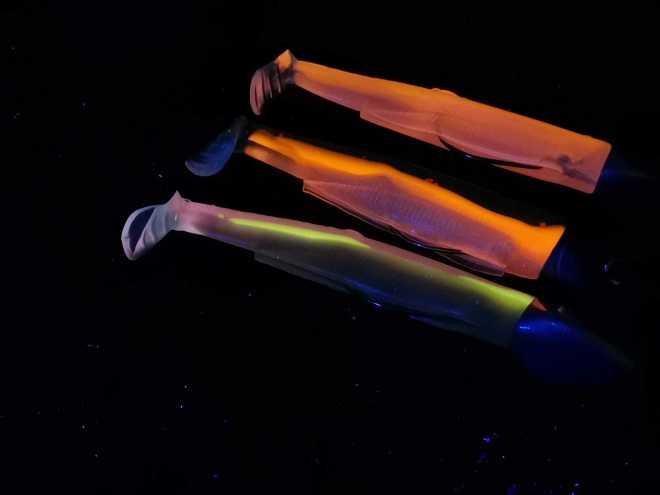 black minnow colori UV illuminati con lampada UV