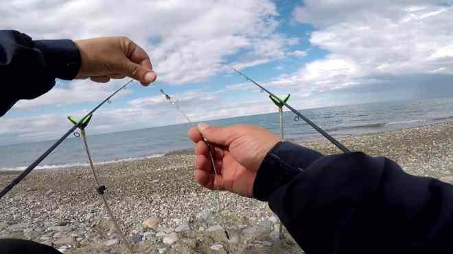 treccina anti-garbuglio per il feeder fishing