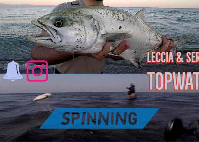 spinning in topwater video