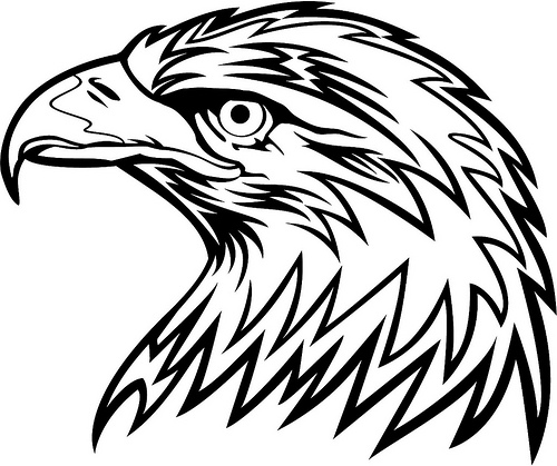 Eagle Clipart Black And White Clipart Coloring Book Bald