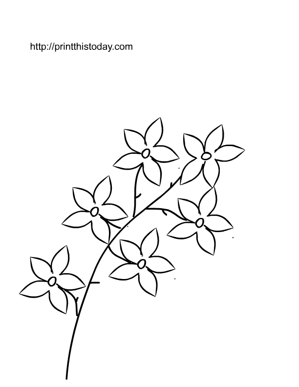 Printable Pictures Of Roses