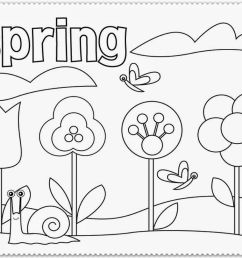 Free Free Coloring Pages For First Grade [ 810 x 1066 Pixel ]