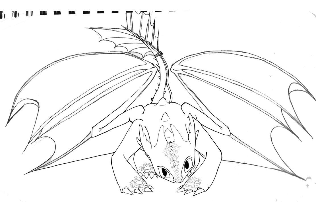 Train Your Dragon Coloring Pages Clip Art Library