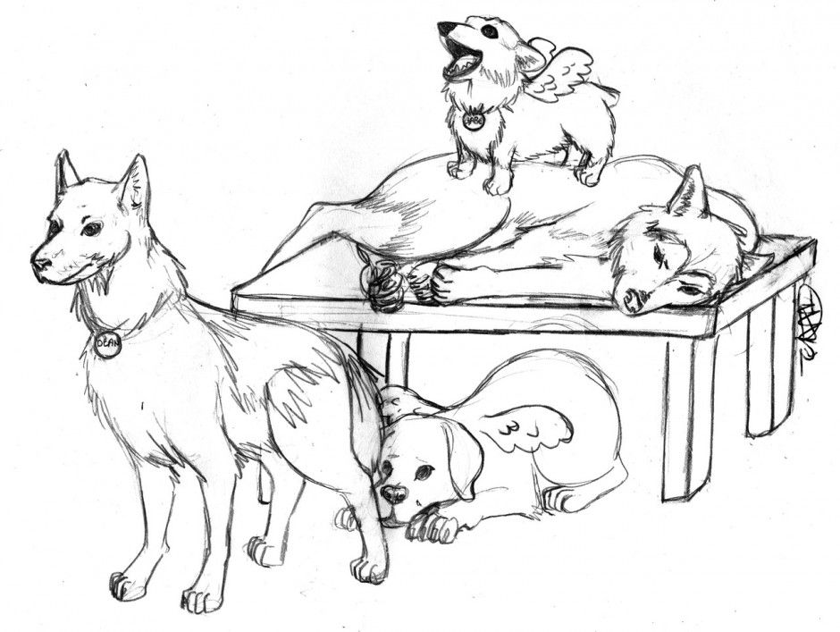 Free Husky Puppy Coloring Pages Download Free Clip Art Free Clip Art On Clipart Library