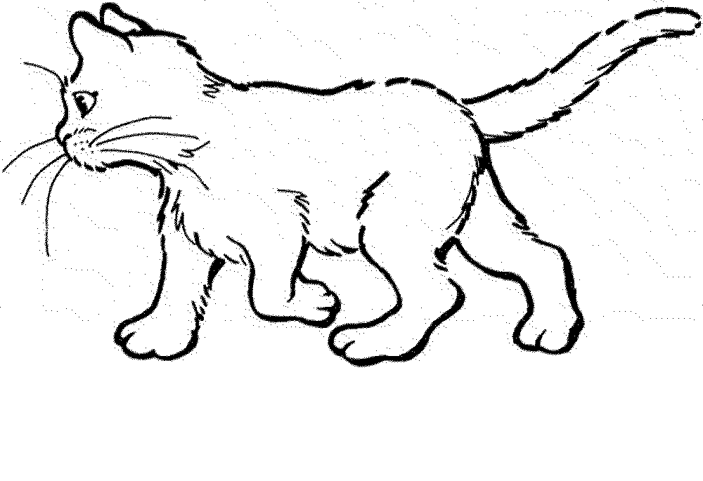 Cat Coloring Pages Clip Art Library