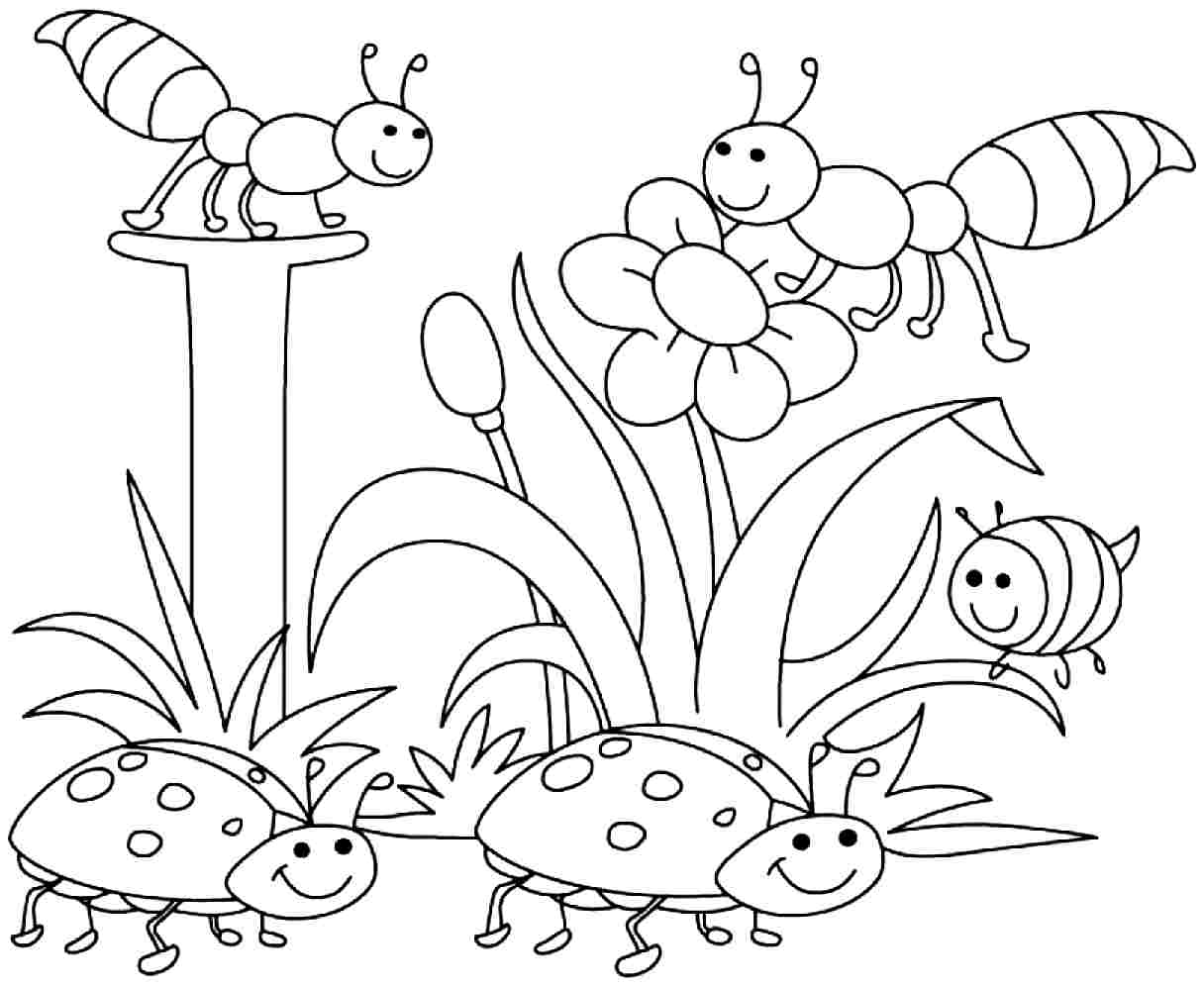 Free Coloring Pages Free For Kids Spring Time Download