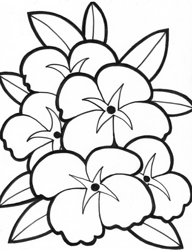 Free Simple Flower Coloring Pages Download Free Clip Art Free Clip Art On Clipart Library