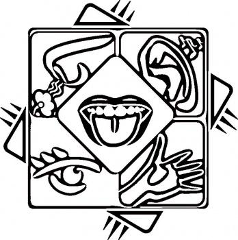 Free 5 Senses Cliparts, Download Free Clip Art, Free Clip