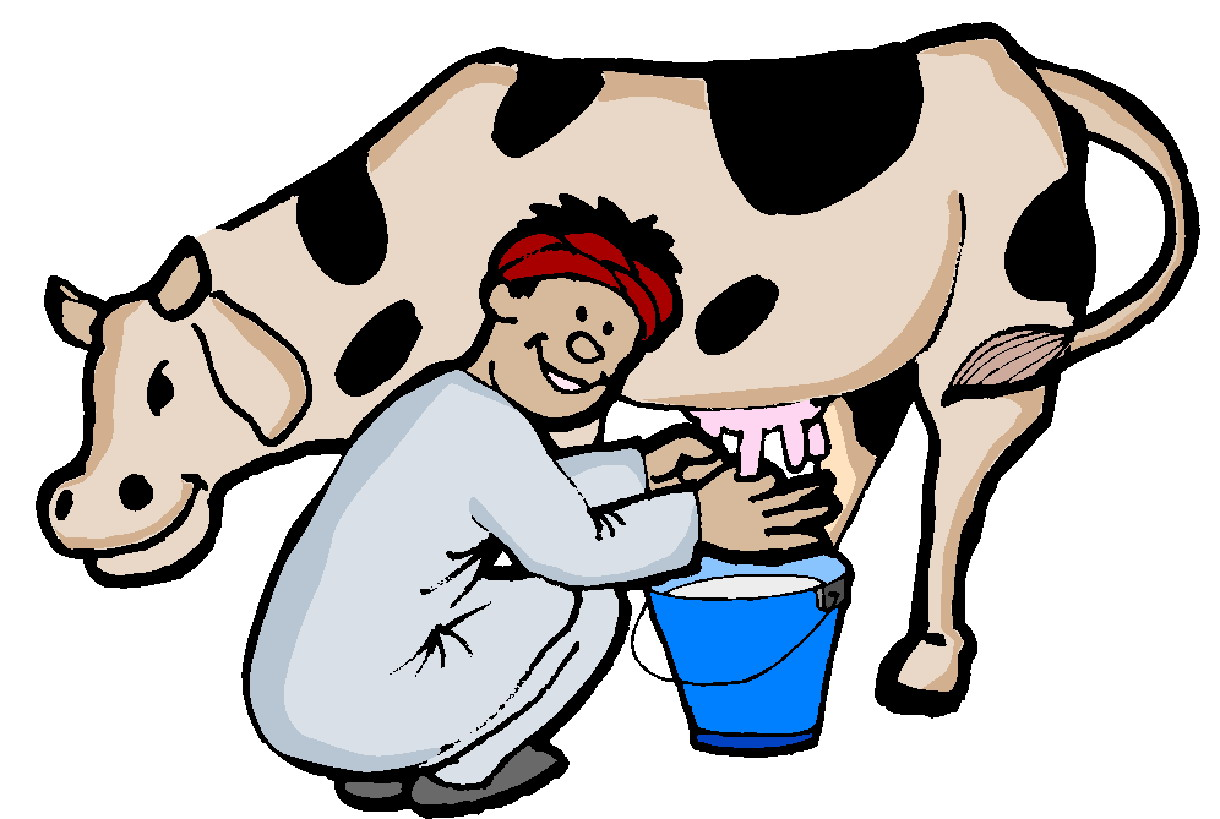 hight resolution of cows clip art