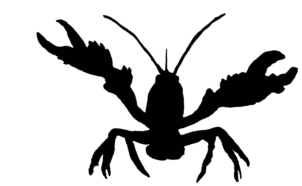 hight resolution of crawfish clipart
