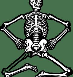 skeleton [ 3333 x 4116 Pixel ]