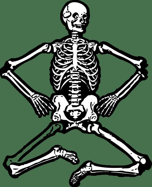 small resolution of skeleton