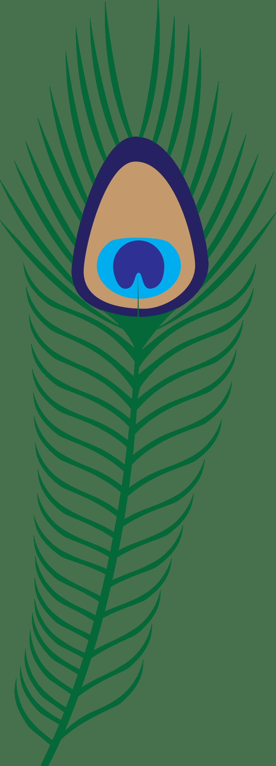 medium resolution of free feather clip art