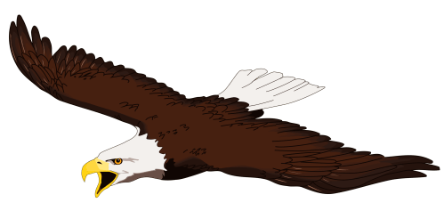 small resolution of eagle clipart free graphics of eagles image