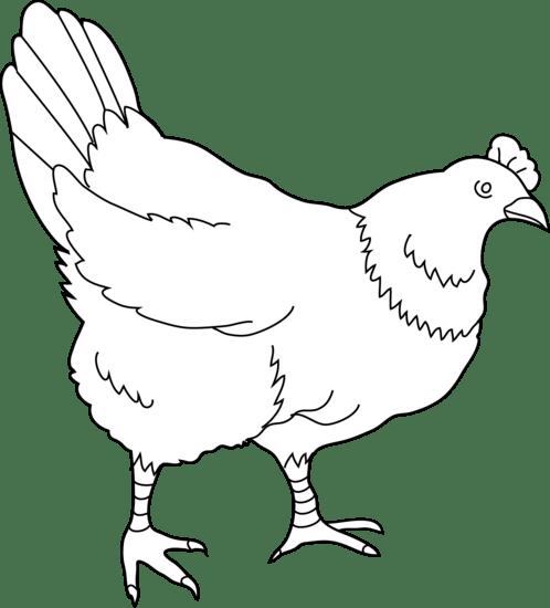 Free Hen Cliparts, Download Free Clip Art, Free Clip Art
