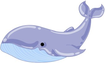 Free Whale Cliparts Download Free Clip Art Free Clip Art on Clipart Library