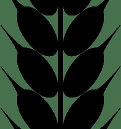 grain clipart [ 555 x 1569 Pixel ]