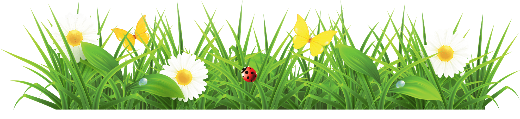 hight resolution of clip art grass clipart cliparts for you 2