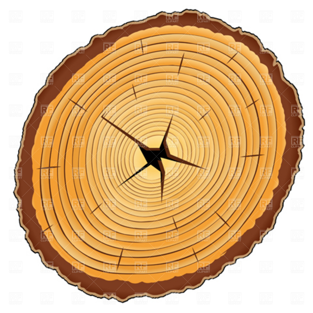 hight resolution of wood grain clipart