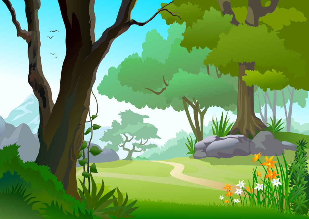 hight resolution of forest background clipart