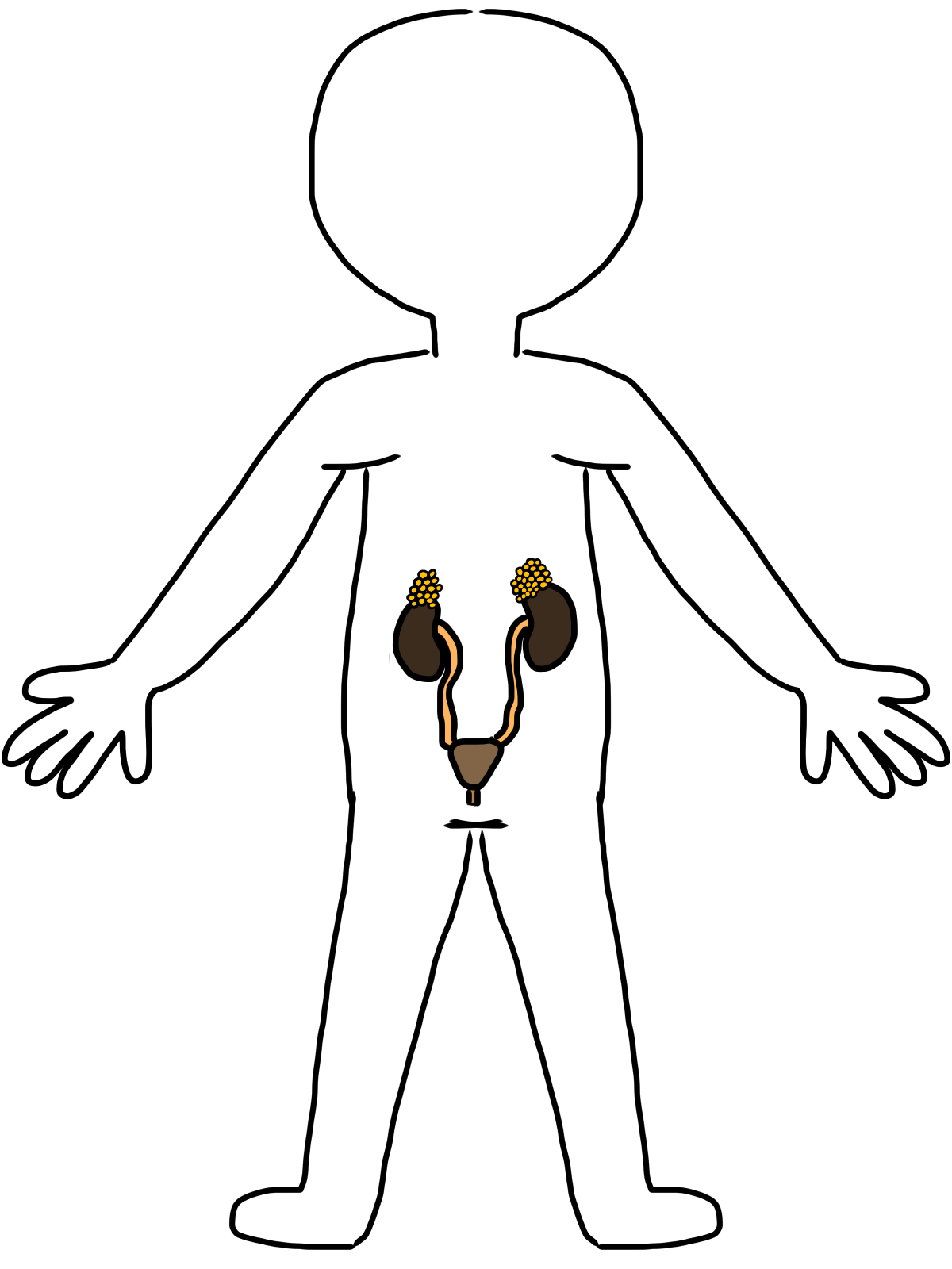 Free Body Cliparts Download Free Clip Art Free Clip Art