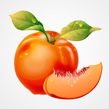 free peach cliparts