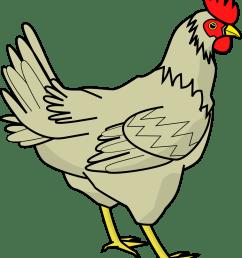 chicken clipart [ 999 x 1185 Pixel ]