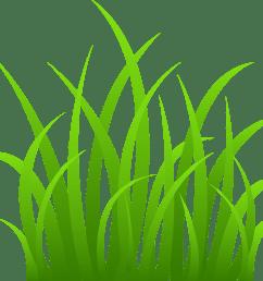 grass border clipart [ 5871 x 4953 Pixel ]