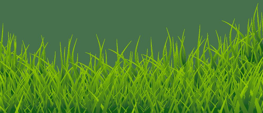 medium resolution of free clip art grass clipart image