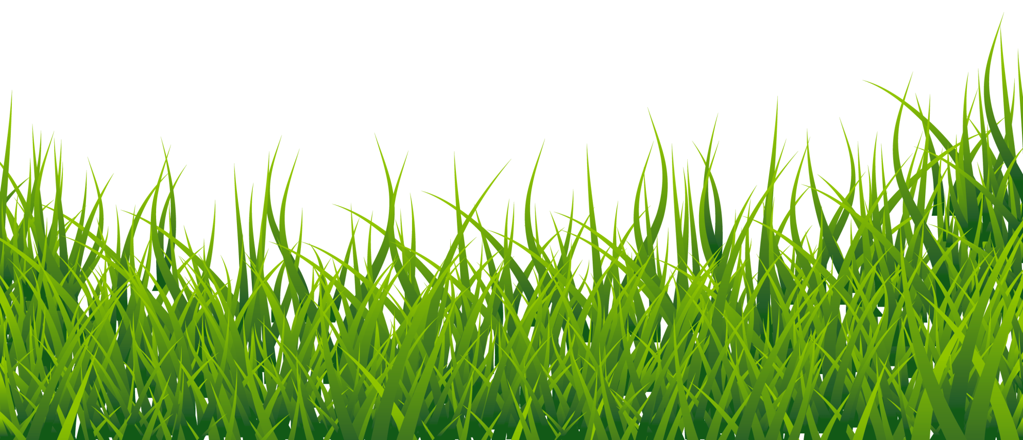 hight resolution of free clip art grass clipart image